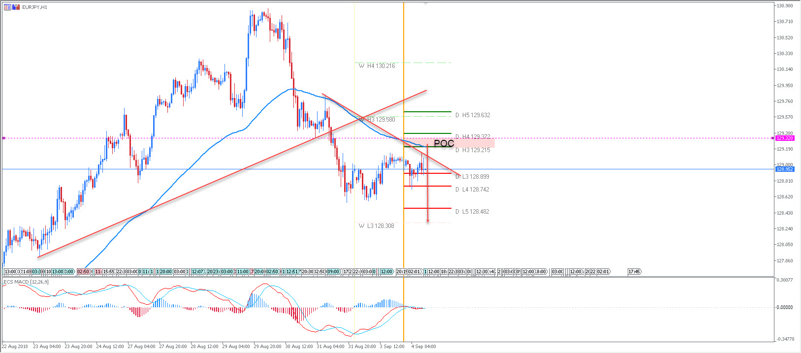 EUR/JPY Wave Analysis