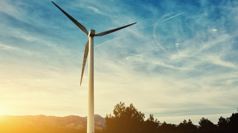 Как да инвестираме в компании за възобновяема енергия?
