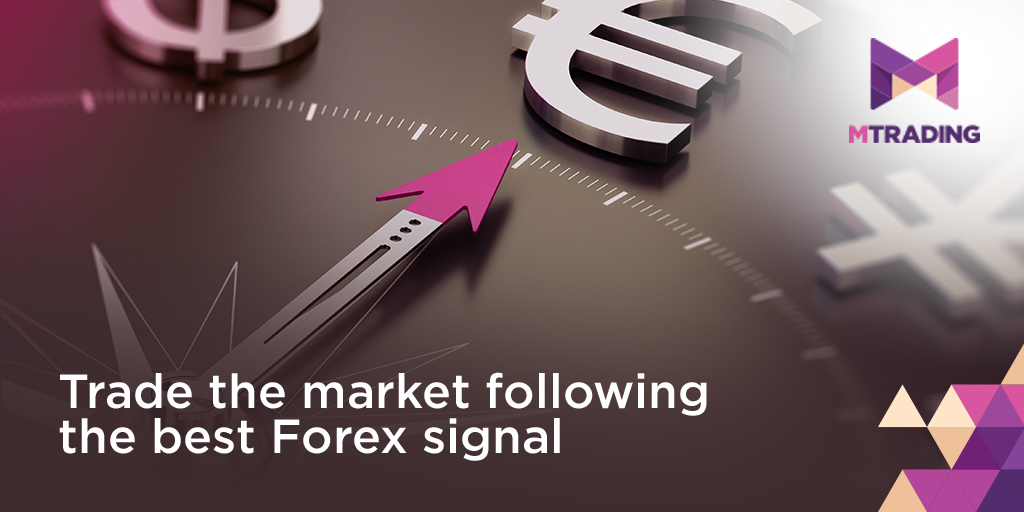 Trade the market following Forex signal
