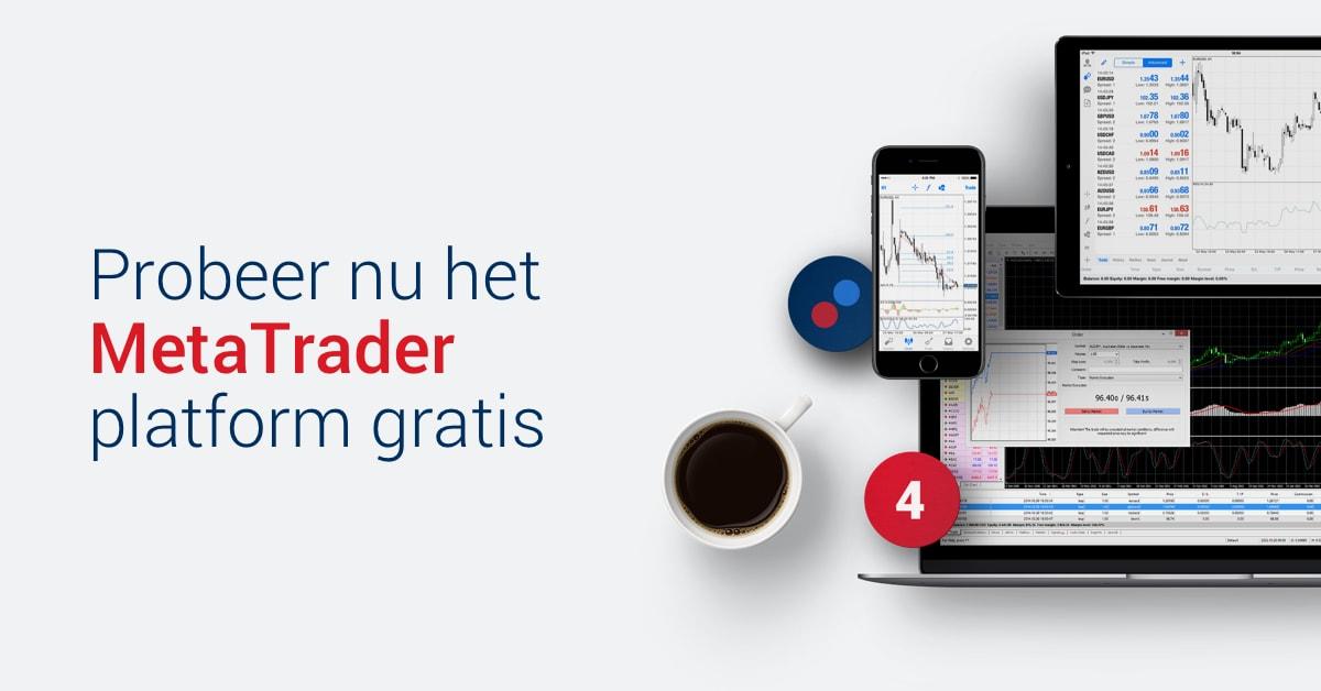 metatrader 4 trading server