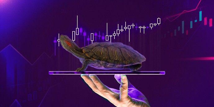 chiến lược giao dịch con rùa