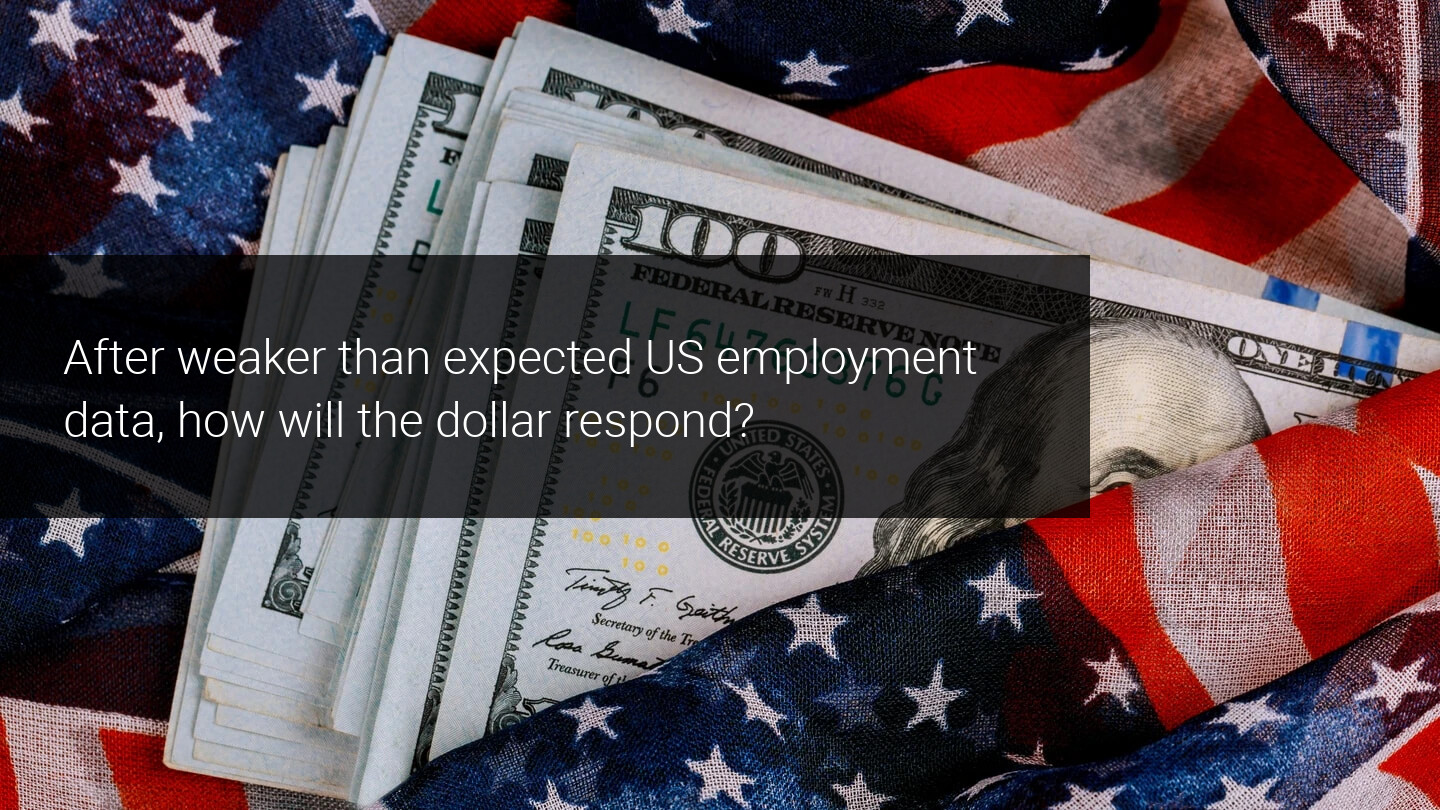 Weak employment data in the US weighs down on the dollar price
