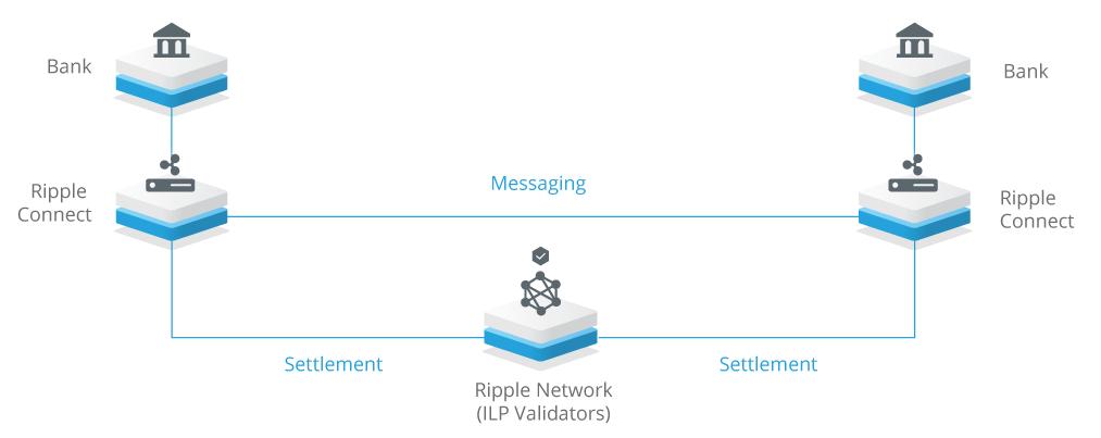 Ripple Netzwerk Funktionalität Skizze